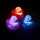 Colour Changing Duck Lights thumbnail image 0