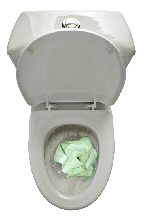 Glow in the dark toilet roll Large Image