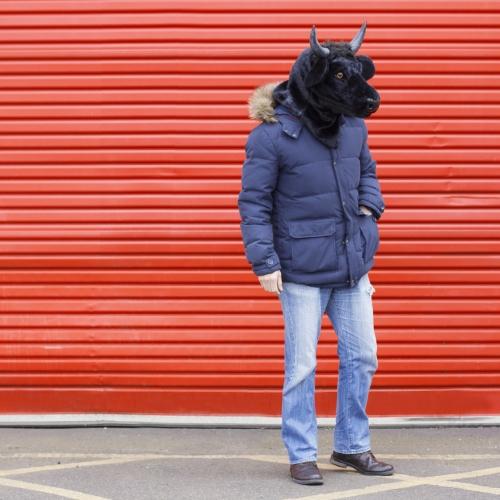 Bull Mask Large Image