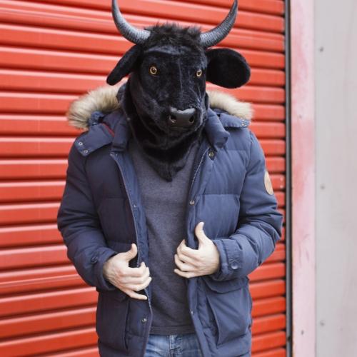 Bull Mask