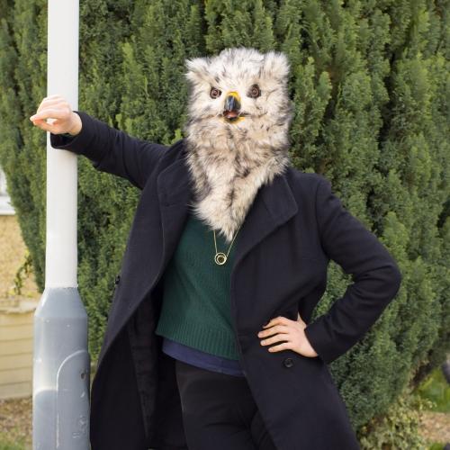 Owl Mask Large Image