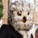 Owl Mask thumbnail image 2