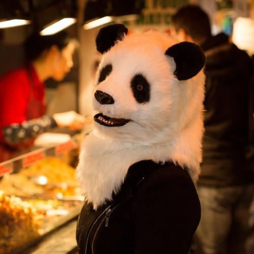 Panda Mask Large Image