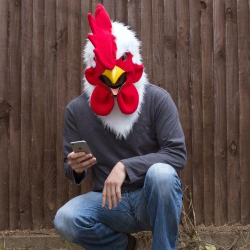 Rooster Mask Large Image
