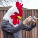 Rooster Mask thumbnail image 3