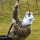 Unicorn Mask thumbnail image 0