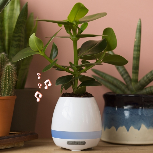 Plant Pot Speaker Large Image