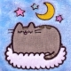 Pusheen - Mini Hot Water Bottle thumbnail image 2