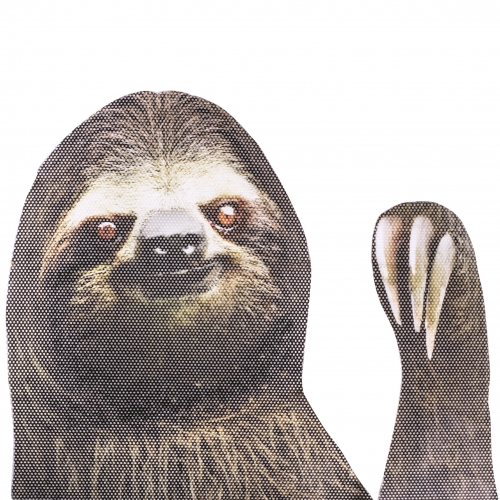 Ride With a Sloth - Fenstersticker Faultier