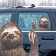 Ride With a Sloth - Fenstersticker Faultier thumbnail image 0