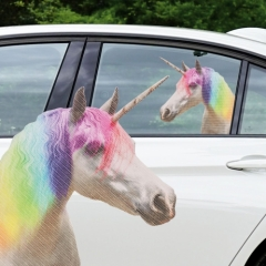 Ride-With Unicorn