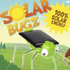 Solar Krabbeltiere