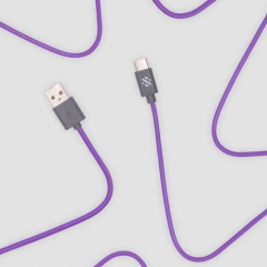 Link - Type C Charge & Sync Cable 1m - Purple