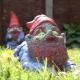 Zombie Gnome - Crawler thumbnail image 2